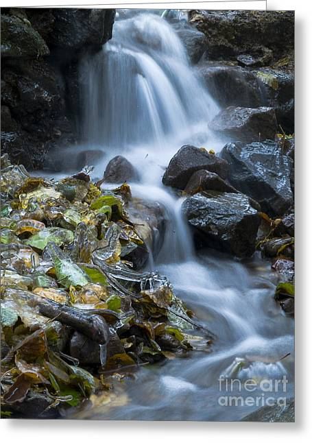 New_year Greeting Cards -  Waterfall Greeting Card by Odon Czintos