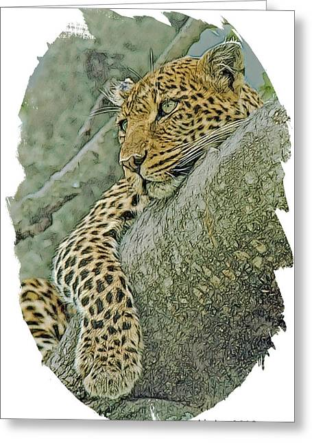 African Cats Greeting Cards - African Leopard Greeting Card by Larry Linton