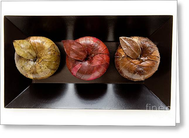 Papier Mache Greeting Cards - 3 Apples Greeting Card by Igor Kislev