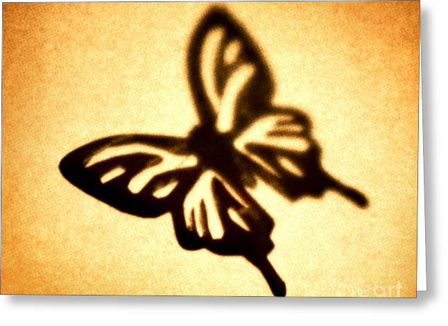 Brown Tone Greeting Cards - Butterfly Greeting Card by Tony Cordoza
