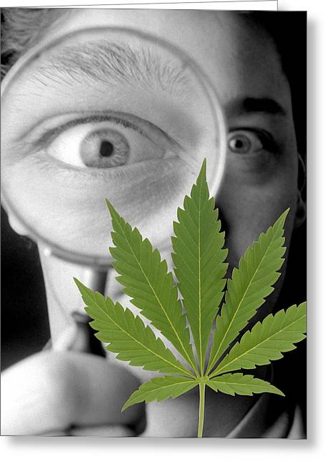 Cannabis Research Greeting Card by Victor De Schwanberg