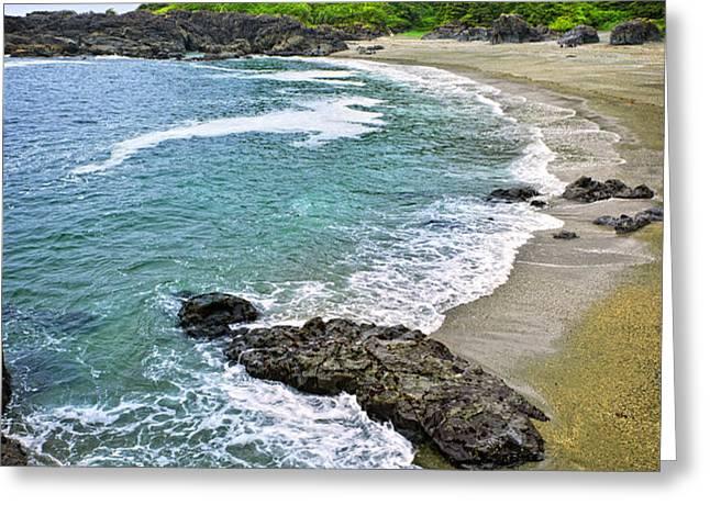 Coast of Pacific ocean in Canada Greeting Card by Elena Elisseeva