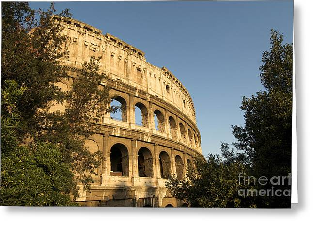 Italy History Greeting Cards - Coliseum. Rome Greeting Card by Bernard Jaubert
