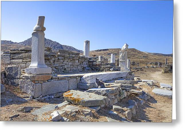 Delos Greeting Card by Joana Kruse