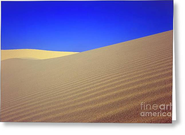 Sahara Sunlight Greeting Cards - Desert Greeting Card by MotHaiBaPhoto Prints