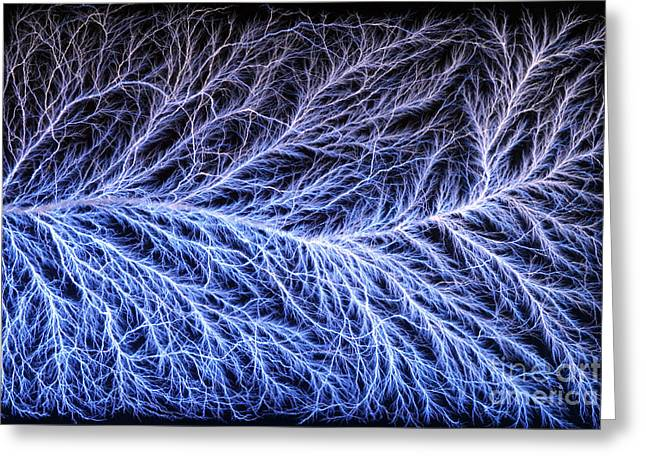 Electrical Discharge Lichtenberg Figure Greeting Card by Ted Kinsman