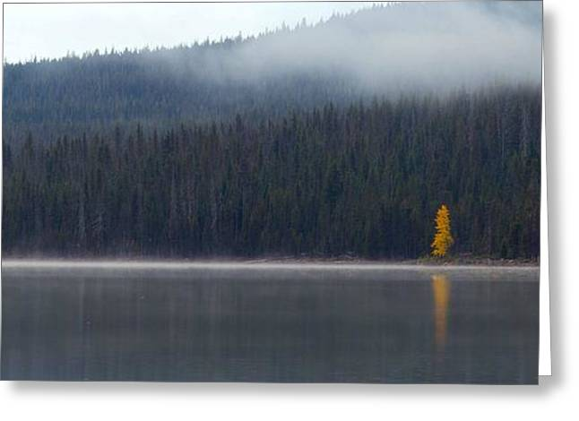 Mt. Bachelor Greeting Cards - Elk Lake Oregon Greeting Card by Twenty Two North Photography