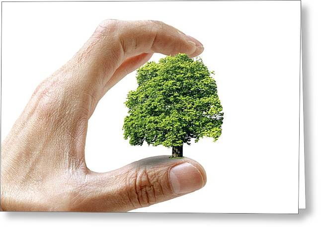 Human Tree Greeting Cards - Environmental Care, Conceptual Image Greeting Card by Victor De Schwanberg