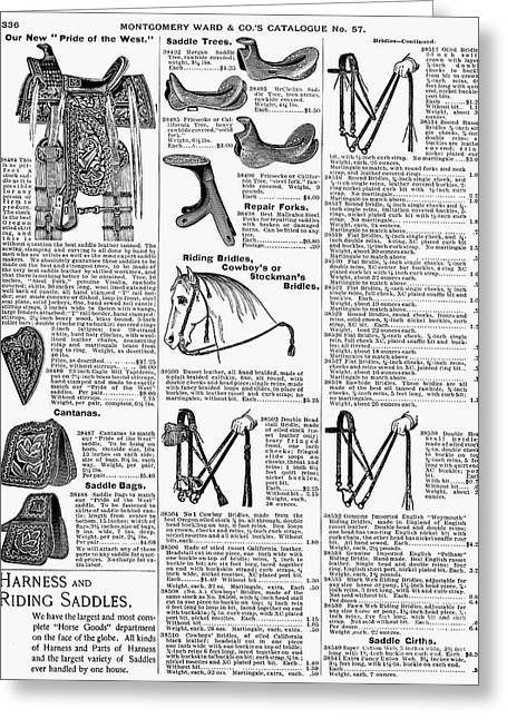 Horse Catalogs Greeting Cards - Equestrian Equipment, 1895 Greeting Card by Granger