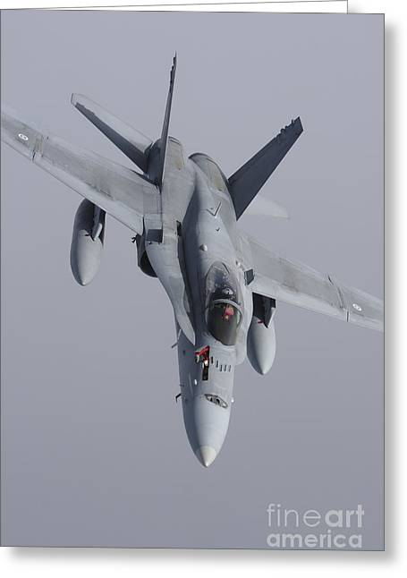 F-18 Greeting Cards - Fa-18 Hornet Of The Finnish Air Force Greeting Card by Daniel Karlsson