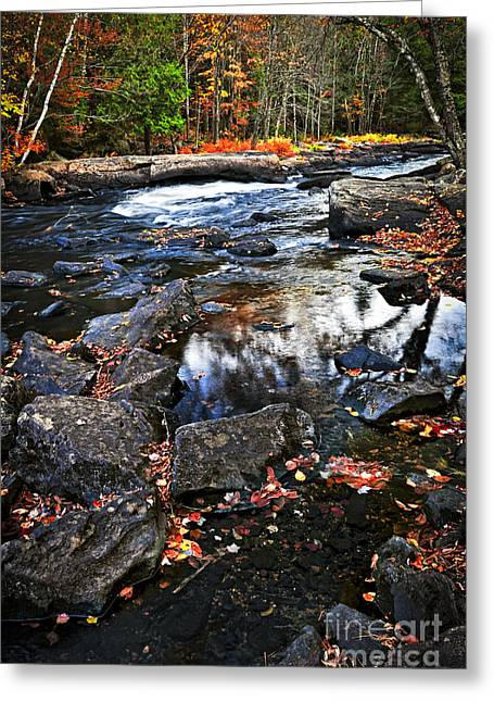 Autumn Greeting Cards - Fall forest and river landscape Greeting Card by Elena Elisseeva