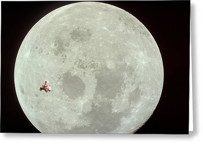 Family Member Greeting Cards - Fifi goes to the moon Greeting Card by Michael Ledray
