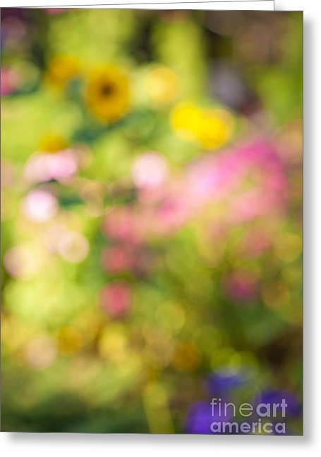 Gardening Greeting Cards - Flower garden in sunshine Greeting Card by Elena Elisseeva