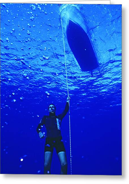 Sporting Equipment Greeting Cards - Free-diver Greeting Card by Alexis Rosenfeld