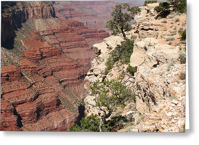grand canyon national park arizona usa Greeting Card by Audrey Campion
