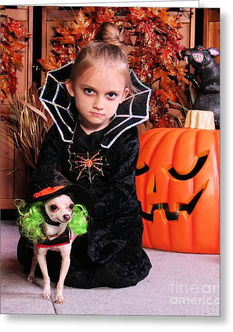 Beetlejuice Greeting Cards - Halloween Dog Portraits - Chihuahua  Greeting Card by Renae Laughner