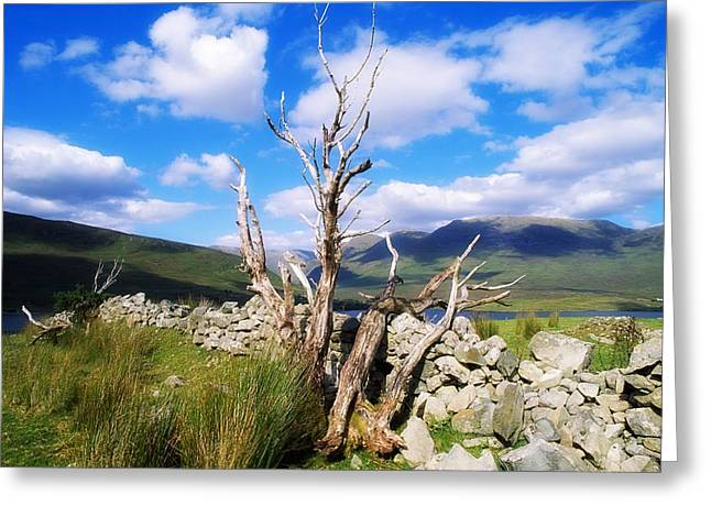 Co Galway Greeting Cards - Killary Harbour, Connemara, Co Galway Greeting Card by The Irish Image Collection