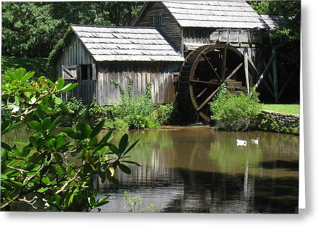 Griss Greeting Cards - Mabry Mill Greeting Card by Maggie Tear