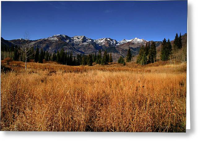 October Pyrography Greeting Cards - Mountain Splender 27 Greeting Card by Southern Utah  Photography