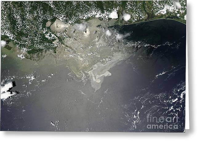 Oil Slick Greeting Cards - Oil Slick In The Gulf Of Mexico Greeting Card by Stocktrek Images