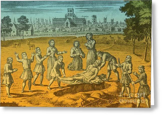 Plague Greeting Cards - Plague, 17th Century Greeting Card by Science Source