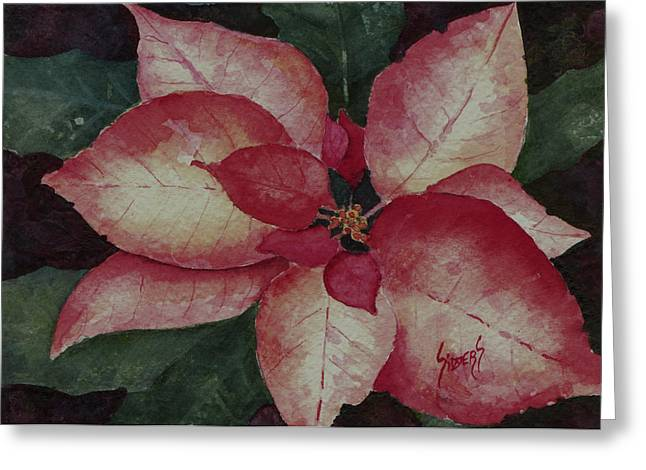 Poinsettia Greeting Card by Sam Sidders