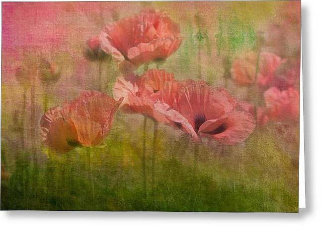 Red Coral Greeting Cards - Poppies Greeting Card by Carolyn Dalessandro
