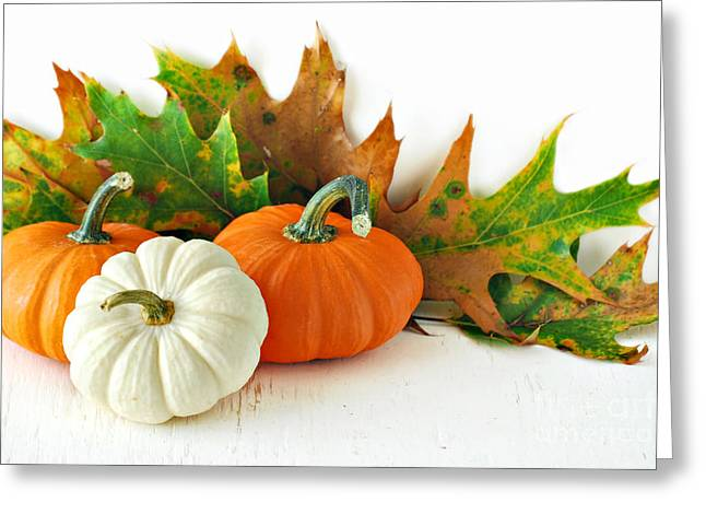 Gourds Greeting Cards - Pumpkins Greeting Card by HD Connelly
