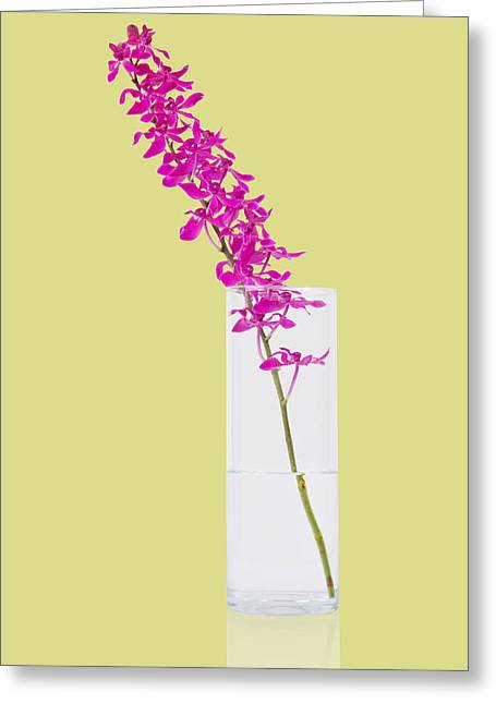 Glass Vase Greeting Cards - Purple Orchid Bunch Greeting Card by Atiketta Sangasaeng