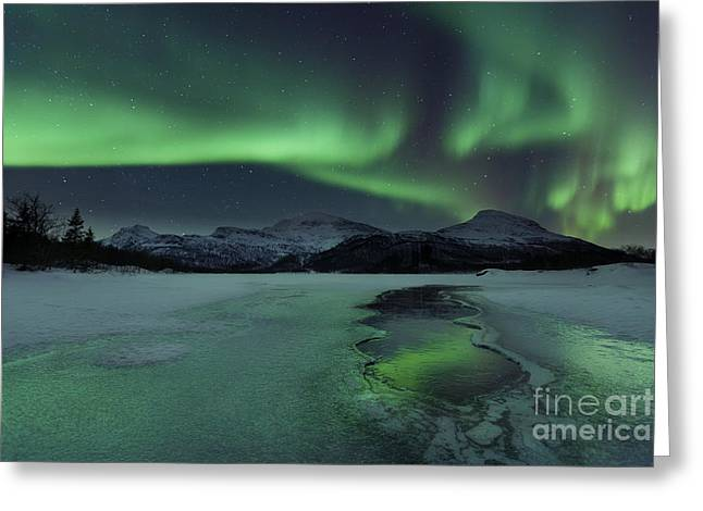 Nordland County Greeting Cards - Reflected Aurora Over A Frozen Laksa Greeting Card by Arild Heitmann