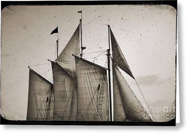 Tall Ship Greeting Cards - Schooner Pride Tall Ship Charleston SC Greeting Card by Dustin K Ryan