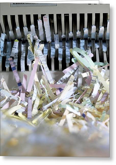 Shredded Paper Greeting Card by Tek Image