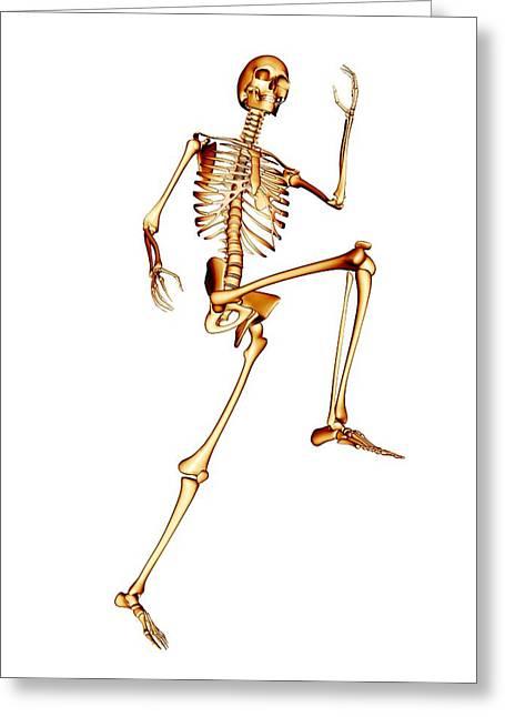 Jogging Greeting Cards - Skeleton Running Greeting Card by Pasieka