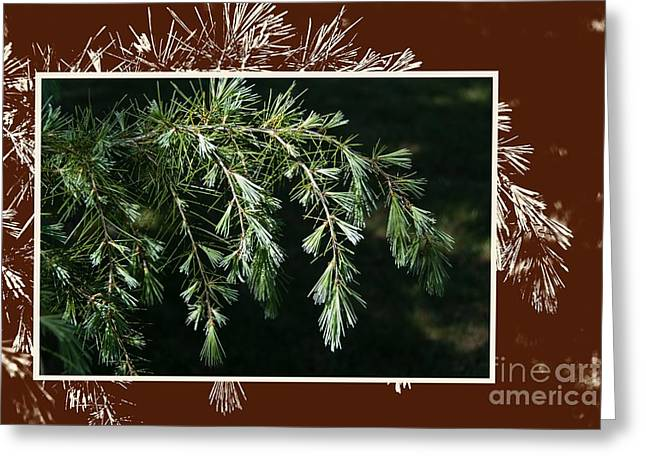 """""""digital Art"""" Greeting Cards - Spring growth Greeting Card by Fran Woods"""
