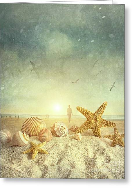 Aquatic Greeting Cards - Starfish and seashells  at the beach Greeting Card by Sandra Cunningham