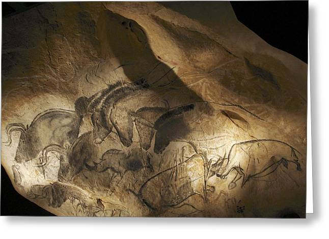 Cave Greeting Cards - Stone-age Cave Paintings, Chauvet, France Greeting Card by Javier Truebamsf