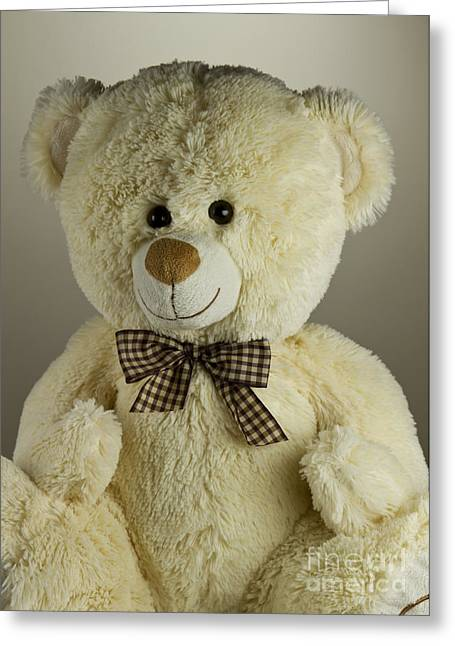 Toy Animals Greeting Cards - Teddy bear Greeting Card by Blink Images