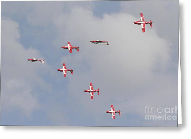 Cooperation Greeting Cards - The Snowbirds 431 Air Demonstration Greeting Card by Terry Moore
