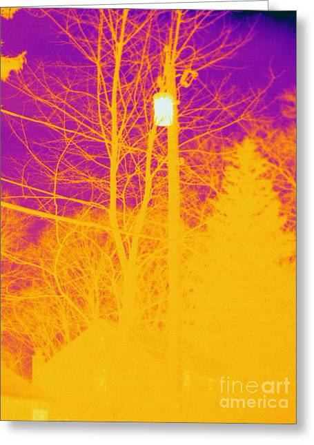Temperature Greeting Cards - Thermogram Of Electrical Wires Greeting Card by Ted Kinsman