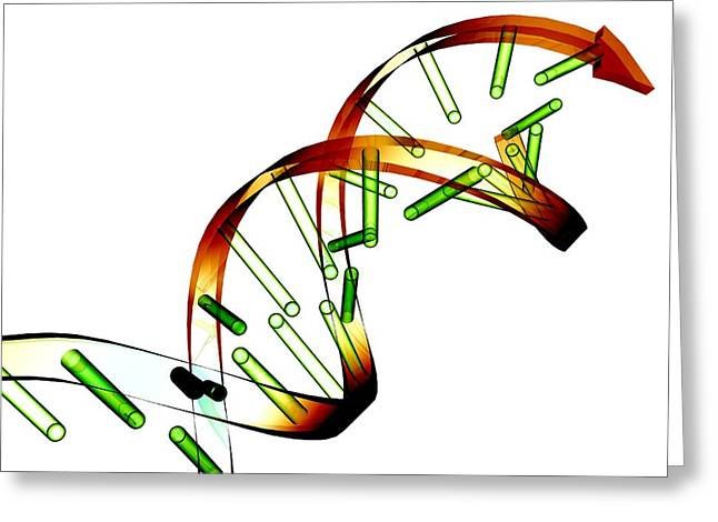 Helix Greeting Cards - Unzipped Dna Molecule, Artwork Greeting Card by Pasieka