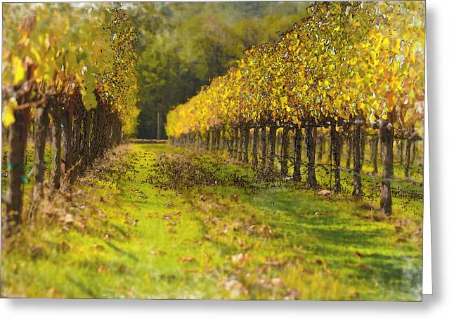 Grapevine Red Leaf Digital Art Greeting Cards - Vineyard Greeting Card by Brandon Bourdages