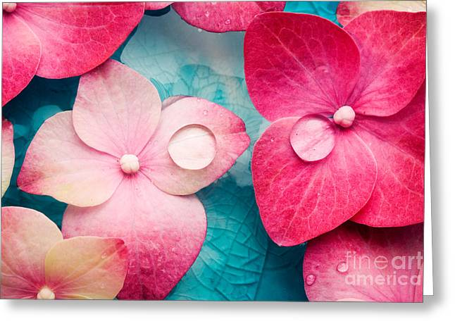 Wellbeing Greeting Cards - Wellness Greeting Card by Kati Molin