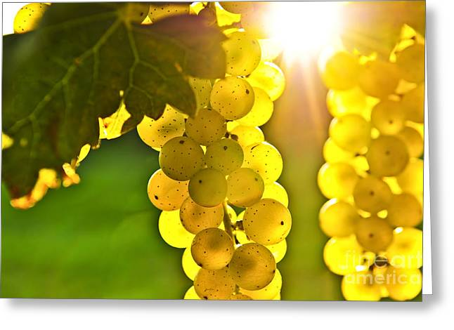Yellow Grapes Greeting Card by Elena Elisseeva