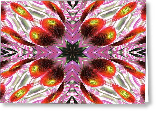 Abstracted Coneflowers Greeting Cards - Coneflower Greeting Card by Michele Caporaso