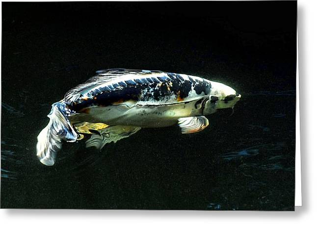 3d Bd Koi Greeting Card by Don Mann