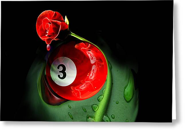 Eightball Greeting Cards - 3rd Rose Greeting Card by Draw Shots