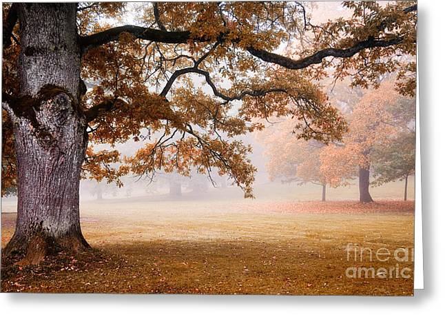 Foggy Day Greeting Cards - Autumn Greeting Card by Kati Molin