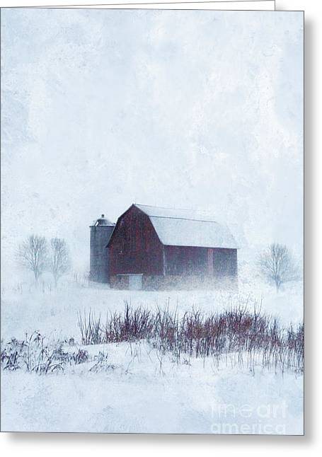 Winter Scenes Rural Scenes Greeting Cards - Barn in Winter Greeting Card by Jill Battaglia