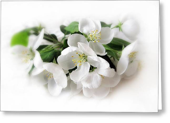 Stamen Digital Art Greeting Cards - Blossom Greeting Card by Jessica Jenney