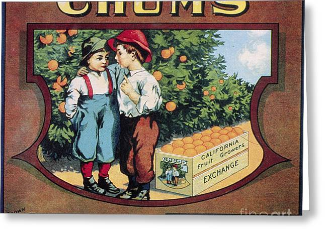 Chum Greeting Cards - CRATE LABEL, 20th CENTURY Greeting Card by Granger